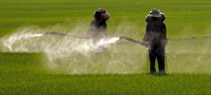 Point de vue sur le Glyphosate